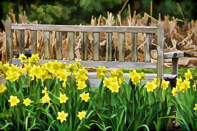 Photograph - Yellow Flowers By The Weathered Bench by David Letts