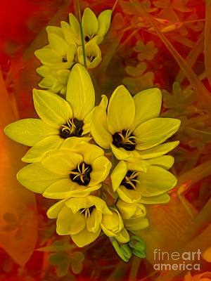 Floral Digital Art Digital Art Digital Art - Yellow Freesias On Red   by Kaye Menner