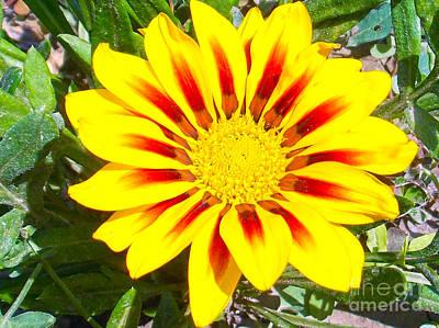 Art Print featuring the photograph Yellow Garden Gerber by Elvira Ladocki
