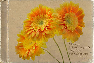 Gerber Daisy Photograph - Yellow Gerber With Quote by Rebecca Cozart