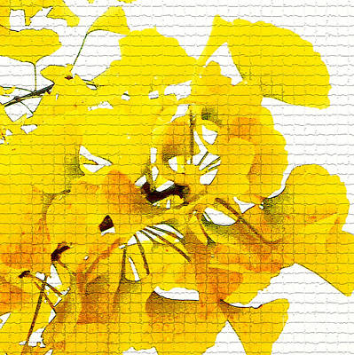 Digital Art - Yellow Ginko Leaves by Ethna Gillespie