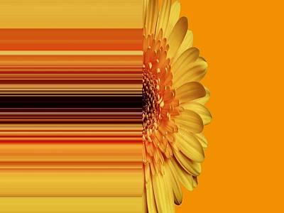 Digital Art - Yellow Gold by Nancy Pauling