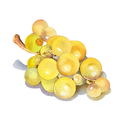 Yellow Grape Art Print by Irina Sztukowski