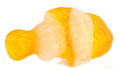 Yellow Gummy Clown Fish Art Print by Iris Richardson