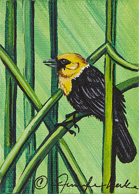 Painting - Yellow Headed Blackbird Mini by Jennifer Lake