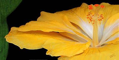 Digital Fine Art Photograph - Yellow Hibiscus. Detail by Ben and Raisa Gertsberg