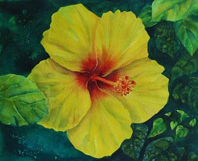Yellow Hibiscus Art Print by Donna Pierce-Clark