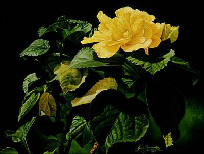 Yellow Hibiscus Art Print by Gary  Hernandez