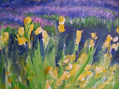 Yellow Iris Art Print by Eric  Schiabor