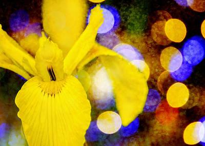 Yellow Iris Sparkle Art Print by Jon Woodhams