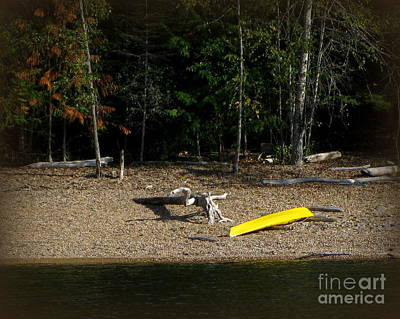Photograph - Yellow Kayak by Leone Lund