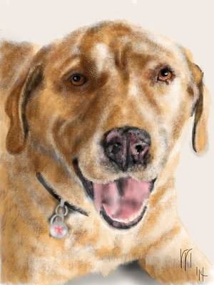 Retrievers Digital Art - Yellow Lab by Lois Ivancin Tavaf