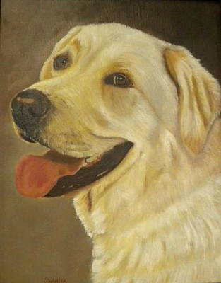 Painting - Yellow Lab by Sharon Schultz