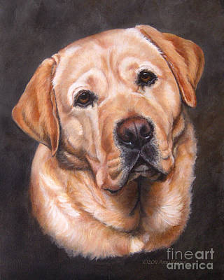Painting - Yellow Labrador Portrait - Dark Yellow Dog by Amy Reges