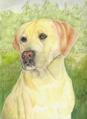 Yellow Labrador Retiever Art Print