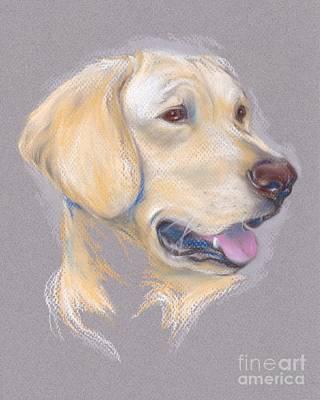Yellow Labrador Retriever Portrait Art Print by MM Anderson