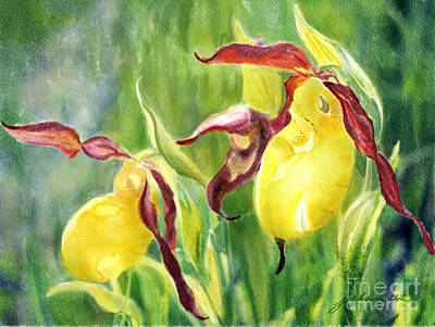 Yellow Lady Slippers Art Print by Joan A Hamilton