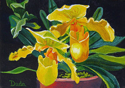 Yellow Lady Slippers Art Print by Susan Duda