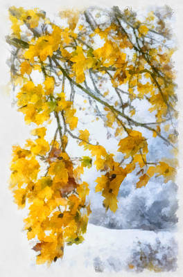 Photograph - Yellow Leaves In Fall - Early Winter Brings The First Snow - Digital Aquarell Painting by Matthias Hauser