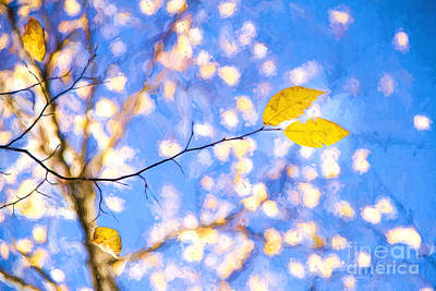 Photograph - Yellow Leaves Of Fall by Lori Dobbs