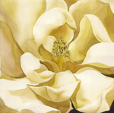 Yellow Magnolia Art Print by Alfred Ng