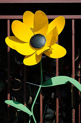 Photograph - Yellow Metal Garden Flower by Tikvah's Hope