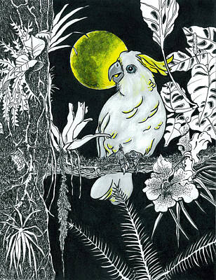 Cockatoo Drawing - Yellow Moon  by Richard Brooks