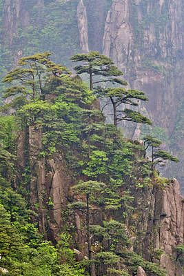Anhui Photograph - Yellow Mountains A Unesco World by Darrell Gulin