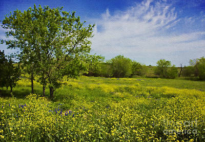 Rural Scenes Digital Art - Yellow Mustard Wildflowers by Elena Nosyreva