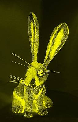 Photograph - Yellow New Mexico Rabbit by Rob Hans