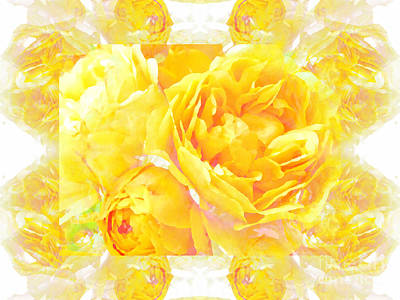 Mixed Media - Yellow Old Fashioned Roses by Barbara Moignard