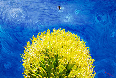 Photograph - Yellow On Blue by SM Shahrokni