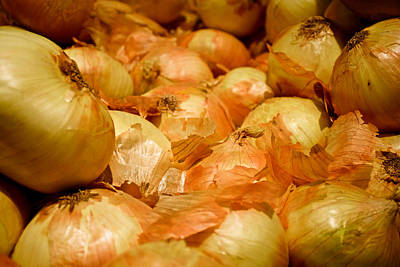 Photograph - Yellow Onions by Robert Meyers-Lussier