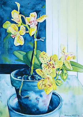 Flower Wall Art - Painting - Yellow Orchid by Zuzana Vass