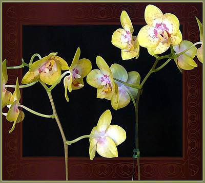 Yellow Orchids Art Print by Mindy Newman