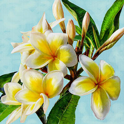 Digital Art - Yellow Plumeria by Jane Schnetlage