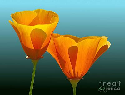 Blue Herron Painting - Yellow Poppies by Rand Herron
