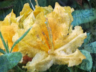 Photograph - Yellow Rhododendron With Texture by Marie Jamieson