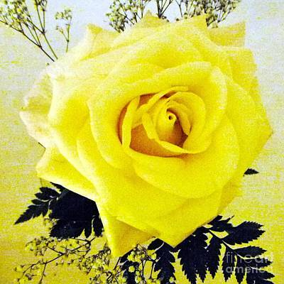 Yellow Rose 2 Art Print by Barbie Corbett-Newmin