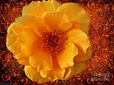 Photograph - Yellow Rose 7 by Debbie Portwood