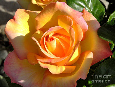 Art Print featuring the photograph Yellow Rose Bud by Debby Pueschel