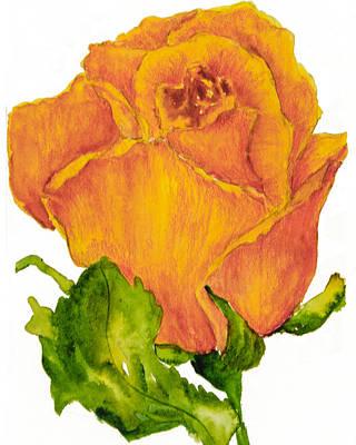 Yellow Rose Bud Art Print