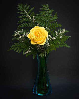 Photograph - Yellow Rose by Kenneth Cole