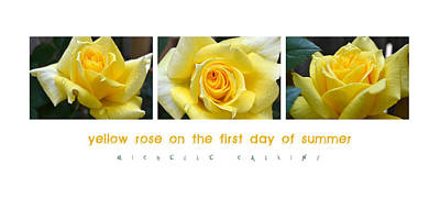 Yellow Rose On The First Day Of Summer Art Print by Michelle Calkins