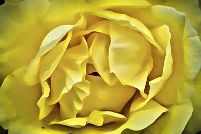 Digital Art - Yellow Rose by Patrick M Lynch