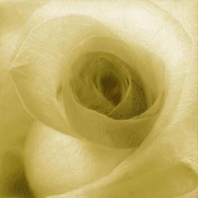 Yellow Rose Original by Tony Rubino