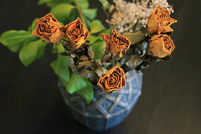 Photograph - Yellow Roses by Dragan Kudjerski