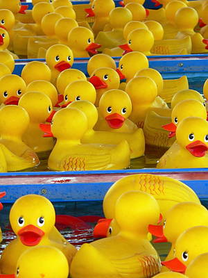 Photograph - Yellow Rubber Ducky by Jeff Lowe