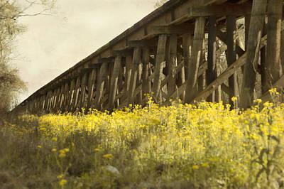 Yellow Bridge Digital Art - Yellow Rustic Setting by Alicia Morales