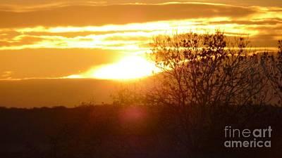 Photograph - Yellow Sky Burning Bright by Julie Koretz